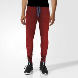 Maroon Solid Joggers
