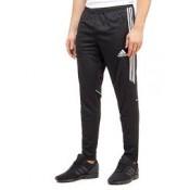 Track Pants  (1)